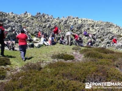 Senderismo Segovia - Macizo de la Buitrera; rutas de senderismo en la sierra de madrid